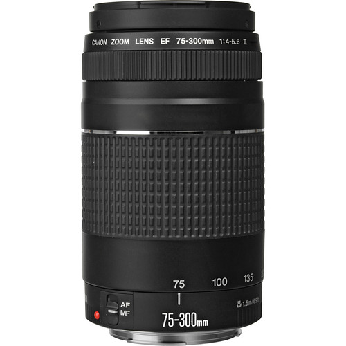 Canon EF 75-300mm f4-5.6 III Lens View 2